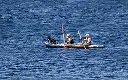 THEMENBILD - zwei Urlauber in einem Kajak mit einem Hund, aufgenommen am 27. Juni 2018 in Pula, Kroatien // two tourists in a kayak with a dog, Pula, Croatia on 2018/06/27. EXPA Pictures © 2018, PhotoCredit: EXPA/ JFK