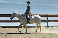 Middletown, New York - A rider and his horse compete in the 70th annual Middletown Rotary Horse Show in the Rotary Ring at Fancher-Davidge Park on Sept. 8, 2013.