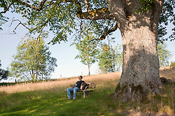 Mature man resting under oak tree in Bavarian Forest