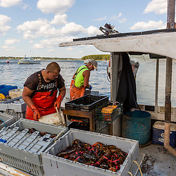 'Norwester III' captains Matt Smith (left), and Eric Smith at Great Wass Lobster in Beals, Maine.