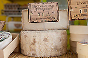 French cheeses on sale at food market at Sauveterre-de-Guyenne, Bordeaux, France
