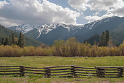 Split Rail Fence, Willows, Grizzly Ridge, Grizzly Peak, Genesee Valley, California Ranches, Spring, Sierra Nevada Mountains, Ponderosa Pine
