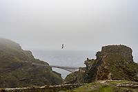 Tintagel Castle in the fog photo by Mark Anton Smith