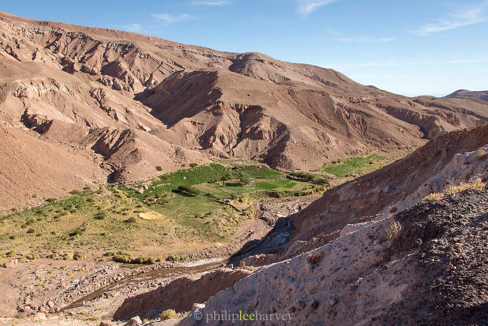 Rio Grande, Antogagasta, Atacama Desert, Chile, South America