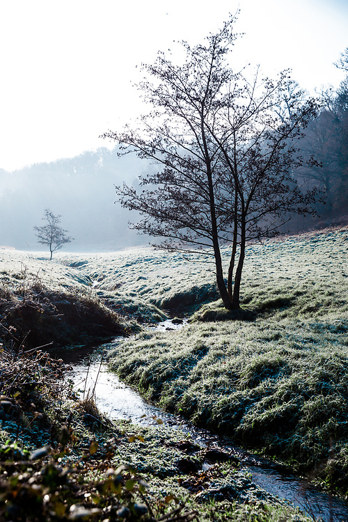 Stream running through the frosty cold valley in the countryside of Jersey, Channel Islands
