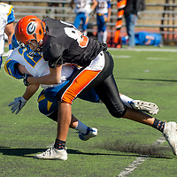 Photo - Jeffery Jones<br /> Gallup Bengal Ky Wero (84) tackles the Bloomfield Bobcat quarterback during Saturday's JV match-up at Angelo DiPaulo Memorial Stadium in Gallup. The Bobcats won 48-8.