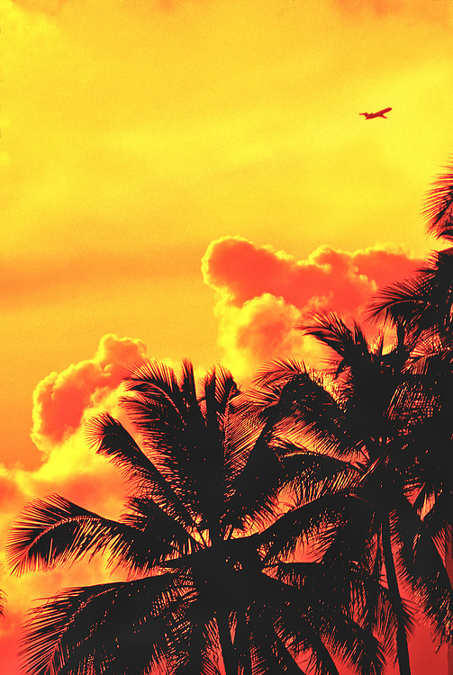 A jetliner soars upward in an orange sky and above big, fluffy clouds and Miami Beach palm trees.
