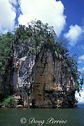 limestone hillock, Los Haitises National Park, Samana, <br /> Dominican Republic ( Caribbean Sea )