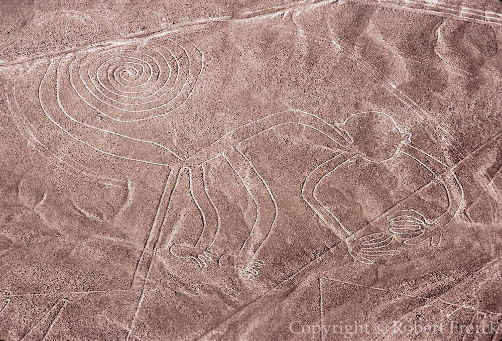 PERU, NAZCA CULTURE Nazca lines, 200AD-800AD; monkey