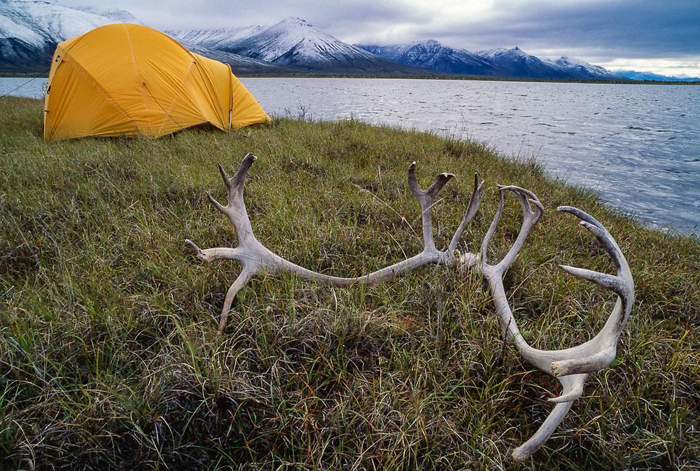 Wilderness campsite at Pingo Lake, Noatak River Valley, Gates of the Arctic National Park, Alaska, USA