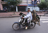 """Dogs on the way to training school. Saigon, Vietnam<br /> Available as Fine Art Print in the following sizes:<br /> 08""""x12""""US$   100.00<br /> 10""""x15""""US$ 150.00<br /> 12""""x18""""US$ 200.00<br /> 16""""x24""""US$ 300.00<br /> 20""""x30""""US$ 500.00"""