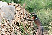 Africa, Tanzania, Lake Eyasi, Hadza men hunting with bow and arrow Small tribe of hunter gatherers AKA Hadzabe Tribe