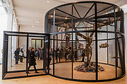The Library for the Birds of London, 2018 - Mark Dion: Theatre of the Natural World at the Whitechapel Gallery. This is the first major UK survey show of the American artist and includes a new work made especially for London. He is an 'explorer, collector, activist and conjuror of magical environments', and invites vistors to embark on a journey.