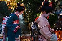 Japon, île de Honshu, région de Kansaï, Kyoto, Gion, quartier des Geishas // Japan, Honshu island, Kansai region, Kyoto, Gion, Geisha area