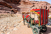 Petra is Jordan's most visited tourist attraction. Horse in front of the Roman Amphitheatre.