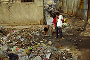 A boy uses a polystyrene pack as a drum as he and his friend scavenge for rubbish to sell. Shadipur Depot. Shadipur Depot, New Delhi, India<br /> The Kathiputli Colony in the Shadipur Depot slum is home to hundreds of (originally Rajasthani) performers. The artistes who live here - from magicians, acrobats, musicians, dancers and puppeteers are often international renowed by always return to the Shadipur slum.