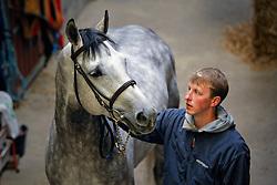 Brondeel Donaat (BEL) - Breemeersen Adorado  <br /> Stal De Breemeersen - Aalter 2008<br /> Photo © Dirk Caremans