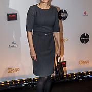 NLD/Amsterdam/20150302 - Uitreiking TV Beelden 2015, Susan Visser