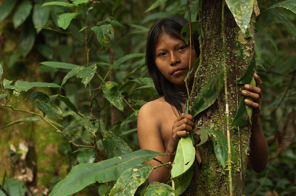 Huaorani Indian girl - Carmen Kaiga. Gabaro Community. Yasuni National Park.<br /> Amazon rainforest, ECUADOR.  South America<br /> This Indian tribe were basically uncontacted until 1956 when missionaries from the Summer Institute of Linguistics made contact with them. However there are still some groups from the tribe that remain uncontacted.  They are known as the Tagaeri. Traditionally these Indians were very hostile and killed many people who tried to enter into their territory. Their territory is in the Yasuni National Park which is now also being exploited for oil.