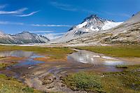 Mount Ethelweard 2819 m (9249 ft) seen from Athelney Pass, Coast Mountains British Columbia Canada