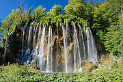 Multiple streams of the beautiful waterfall Veliki prstavac plunge 28 meters. Plitvice Lakes National Park (Nacionalni park Plitvicka jezera, in Croatia, Europe) was founded in 1949 and is honored by UNESCO as World Heritage Site. Waters flowing over limestone, dolomite, and chalk in this karstic landscape have, over thousands of years, deposited travertine barriers, creating natural dams, beautiful lakes and waterfalls. Warming conditions after the last Ice Age (less than 12,000 years ago) allowed the natural dams to form from tufa (calcium carbonate) and chalk depositing in layers, bound by plants. Plitvicka Jezera is a municipality of Lika-Senj County, in the Republic of Croatia.