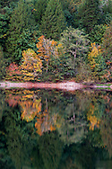 Early Fall colours at Silver Lake in Silver Lake Provincial Park near Hope, British Columbia, Canada