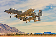 """A-10 """"Warthogs"""" on final approach at Nellis Air Force Base, near Las Vegas, Nevada."""