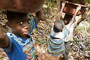 Boys carry palm nuts on a cocoa plantation near the town of Moussadougou, Bas-Sassandra region, Cote d'Ivoire on Monday March 5, 2012.