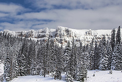 The frosted over Breccia Cliffs of Togwotte Pass near Jackson Hole Wyoming