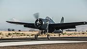 FM-2 Wildcat of the Erickson Aircraft Collection landing.