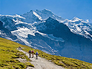 """Hike at Kleine Scheidegg towards the icy peak of Jungfrau (4158 meters or 13,642 feet) in the Berner Oberland, Switzerland, the Alps, Europe. Published in Wilderness Travel 2018 Catalog of Adventures. The Bernese Highlands are the upper part of Bern Canton. UNESCO lists """"Swiss Alps Jungfrau-Aletsch"""" as a World Heritage Area (2001, 2007)."""