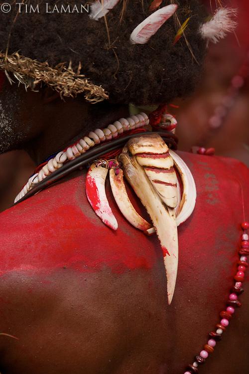Huli Wigmen from Tari area, Southern Highlands Province, Papua New Guinea.