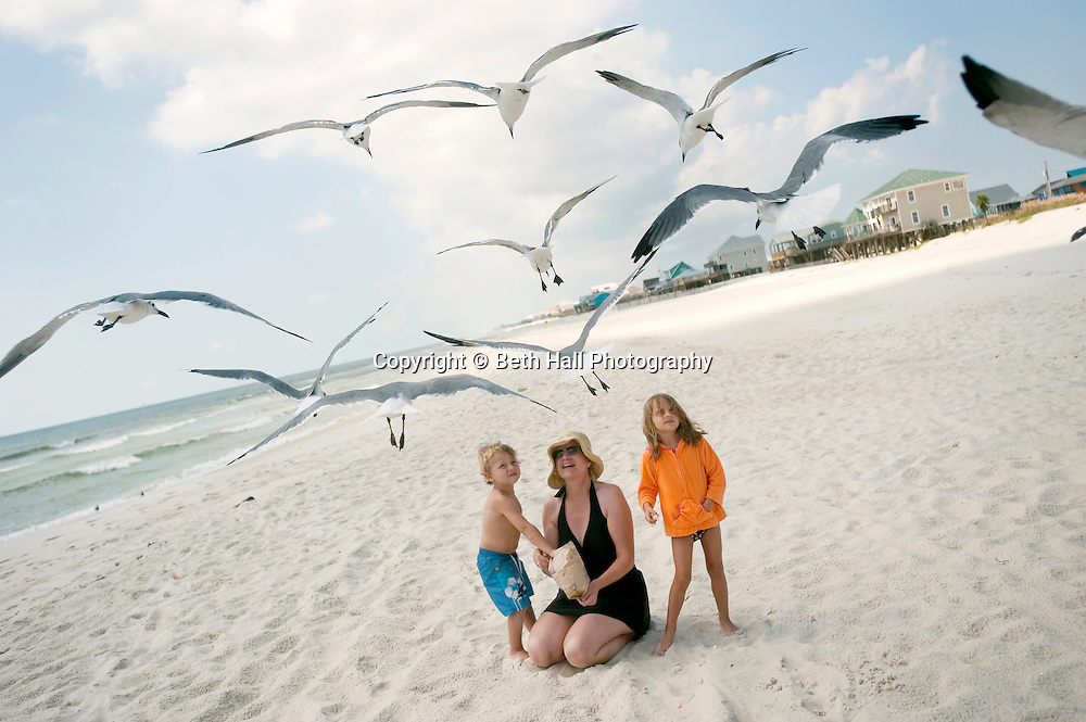 A 3 year old boy and 4 year old girl feed seagulls with their grandmother on the beach.