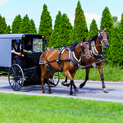 Ronks, PA, USA - August 30, 2020: An Amish buggy with two horses travels on a rural road in Lancaster County.