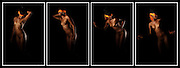 Limited edition Art Nudes for A1 and A3 prints on Archival Paper or Canvas delivered world wide