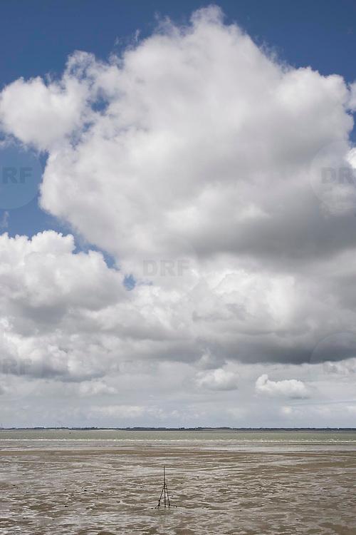 Nederland Ossenisse  gemeente Hulst  19 juni 2010 20100619      .. Serie landschappen provincie Zeeland. Zeeuws-Vlaanderen, rivierlandschap  westerschelde.  scenery. Zandbanken van de rivier de westerschelde met op de voorgrond een baken. Uitdiepen, verdiepen. Illustratief beeld  waterveiligheid. , waterstand, weersomstandigheden, wei, weide, weidegang, weiland, weiland. Landscape, westerschelde, westeschelde, wijdheid, wijds, wijdsheid, wind, wit, witte, wolk, wolken, wolkenpartij, zee, zeeland, zeespiegel, zeespiegelstijging, zeeuws vlaanderen, zeeuws-vlaanderen, zeewaterniveau, zo vrij als een vogel, zonnig, zonnige dag, zware, zwitserleven gevoel ..Foto: David Rozing