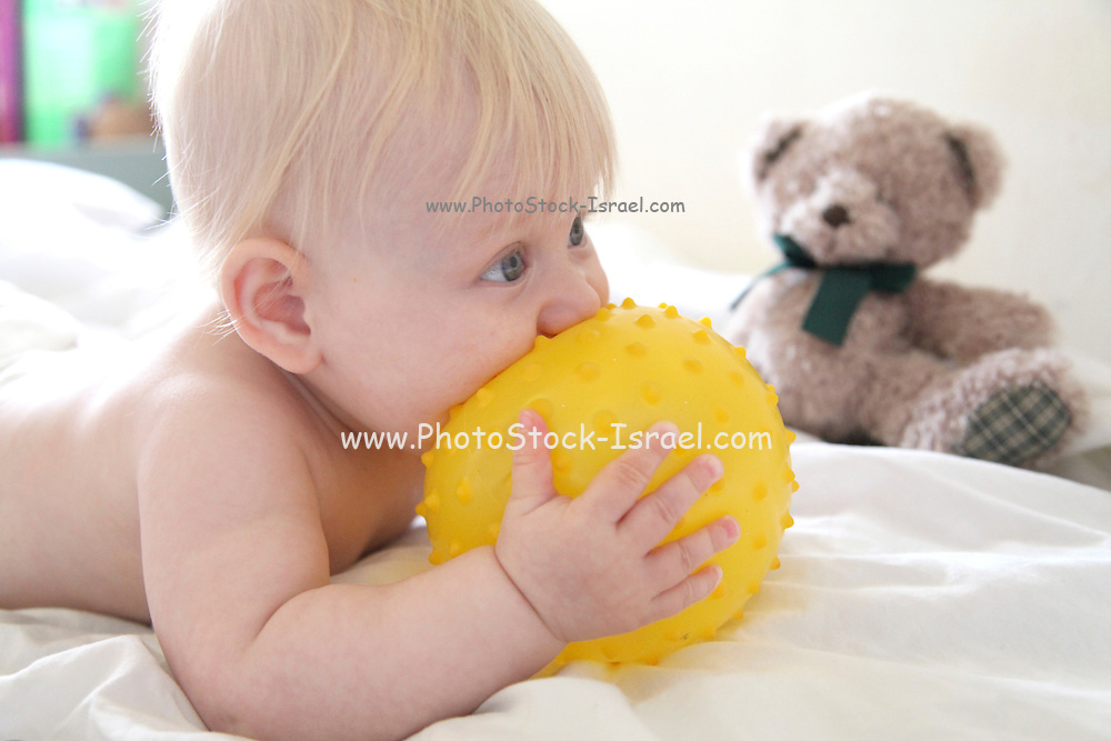 baby eats a yellow ball. Model release Available