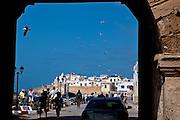 People and birds alike enjoy the sun in the old medina of Essaouira.