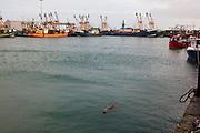 Kilmore Quay, Wexford, Ireland