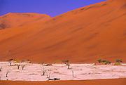 Sossusvlei, Red sand dunes, Namibia