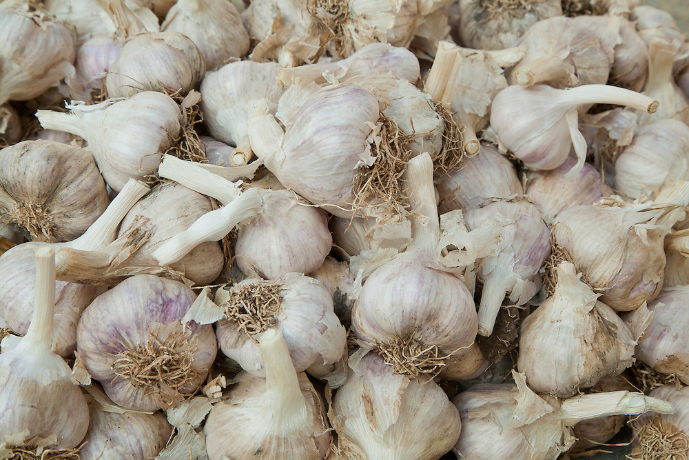 Middle East, Israel, Nazareth, cloves of garlic for sale in market