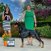 Cabrillo Kennel Club 07/25/2021