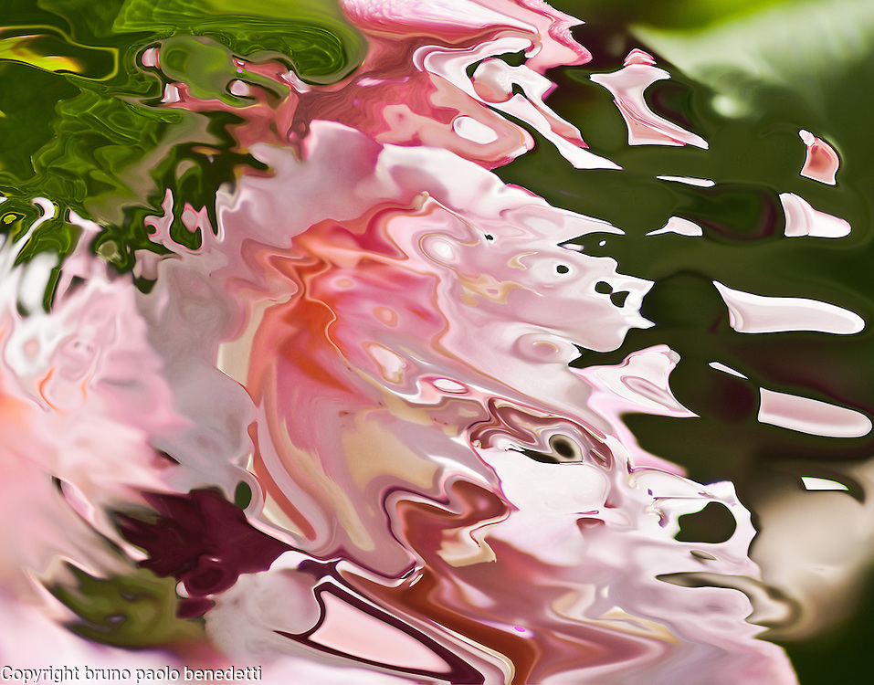 Light pink shades in acquerello texture in abstrat fluid shape on blurred green background