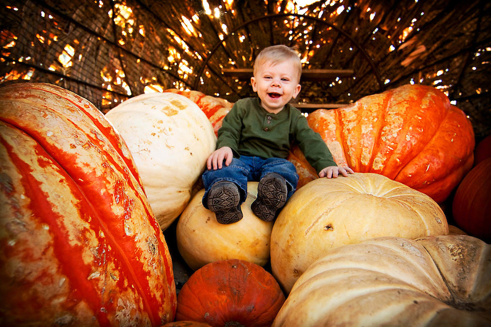 Anderson Farm's pumpkin patch in Erie, CO on Oct. 23, 2011.<br /> By: Marie Griffin Dennis<br /> mariefgriffin@gmail.com<br /> mariegriffinphotography.com