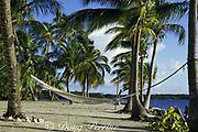empty hammock, Turneffe Island, Turneffe Atoll, Belize, Central America ( Caribbean Sea )