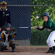 A young batter attempts to bunt during the Norwalk Little League baseball competition at Broad River Fields, Norwalk, Connecticut. USA. Photo Tim Clayton