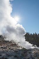 Steamboat Geyser Norris Geyers Basin Yellowstone National Park
