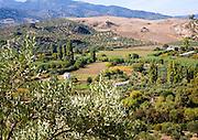 Fertile green valley farmland near Zahara de la Sierra, Cadiz province, Spain