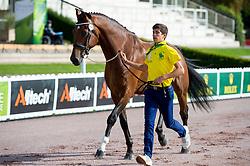 Davi Salazar Pessoa Mesquita, (BRA), Balthasar - Horse Inspection Para Dressage - Alltech FEI World Equestrian Games™ 2014 - Normandy, France.<br /> © Hippo Foto Team - Jon Stroud<br /> 25/06/14