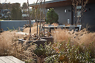 2012 December 05 - Nova Apartments rooftop area, Seattle, WA. By Richard Walker